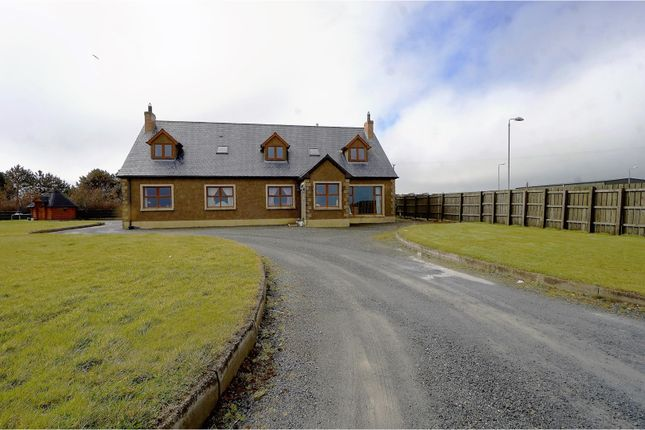 Thumbnail Detached house for sale in Shore Road, Ballyhalbert, Newtownards