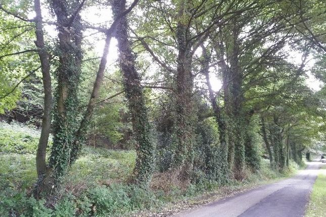 Thumbnail Land for sale in South Hill, Woolley Moor, Alfreton