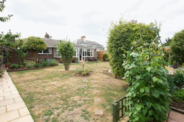 Thumbnail Detached bungalow for sale in Hardy Road, St. Margarets-At-Cliffe, Dover