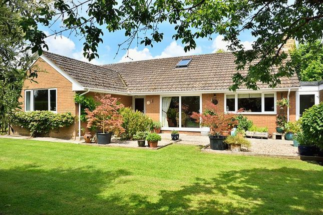 Thumbnail Detached house for sale in 4/5 Bedroom Bungalow On Pendock Lane, Pendock, Gloucestershire