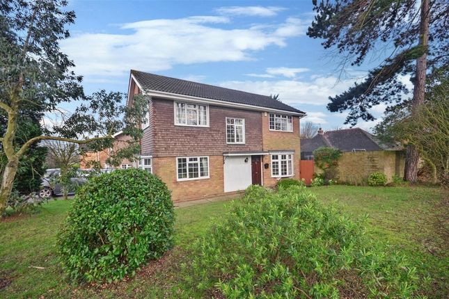 Thumbnail Detached house for sale in Warley Hill, Brentwood, Essex