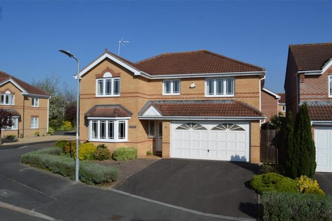 Thumbnail Detached house for sale in Craig Lea, Taunton, Somerset