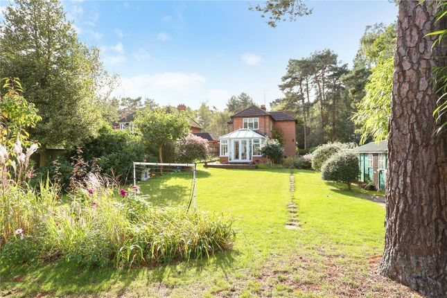 Thumbnail Detached house for sale in Bracken Lane, Blackmoor, Hampshire