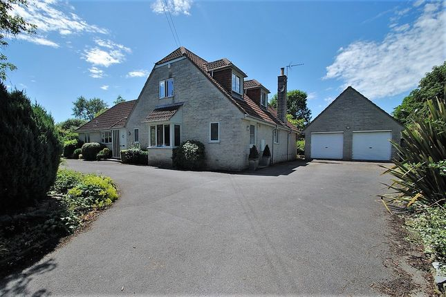 Thumbnail Detached house for sale in Church Lane, East Lydford, Somerton