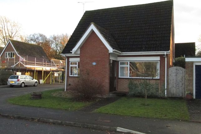 Thumbnail Detached house for sale in Judith Gardens, Potton