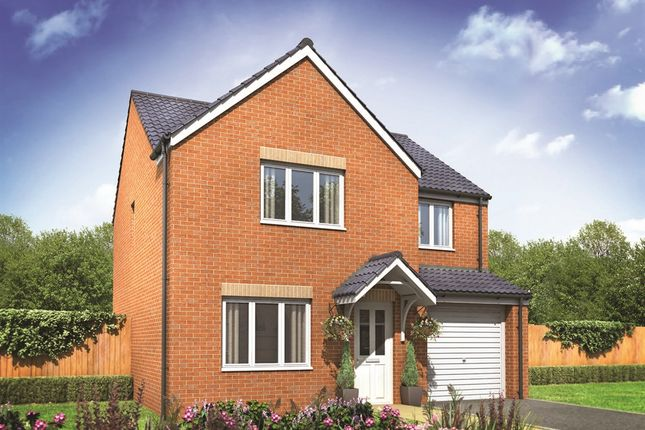 "Thumbnail Detached house for sale in ""The Roseberry"" at Highclere Drive, Sunderland"