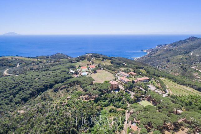 Thumbnail Farm for sale in Capoliveri, Livorno, Toscana