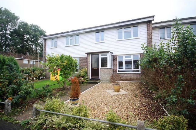 Thumbnail Terraced house to rent in Norris Close, Romsey