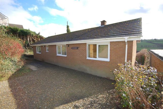 Thumbnail Bungalow to rent in Cwmhudol, Capel Dewi, Aberystwyth