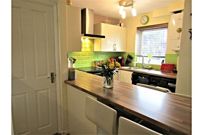 Thumbnail Terraced house for sale in Mellons Close, Newton Abbot