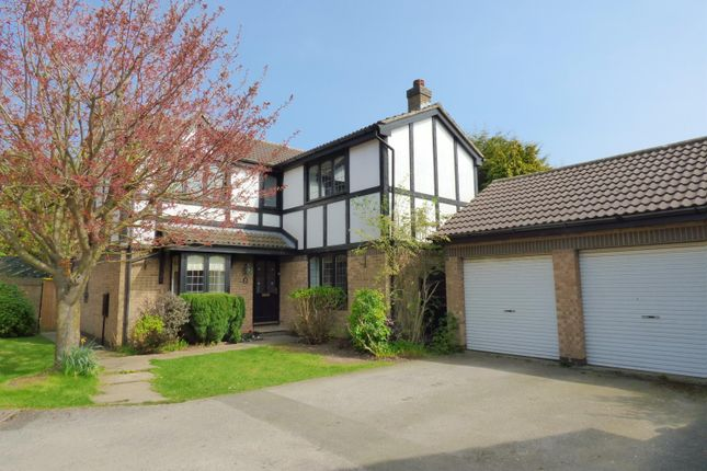 Thumbnail Detached house to rent in Colleridge Grove, Beverley