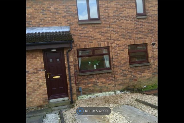 Thumbnail Terraced house to rent in Ashfield, Glasgow