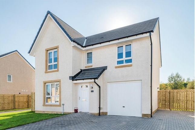 "Thumbnail Detached house for sale in ""Dunbar"" at Mavor Avenue, East Kilbride, Glasgow"