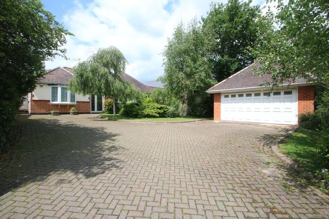 Thumbnail Detached bungalow for sale in Fountain Lane, Hockley