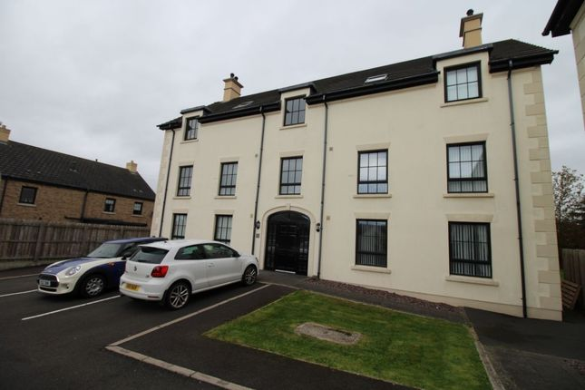 Thumbnail Flat to rent in Lady Wallace Court, Lisburn