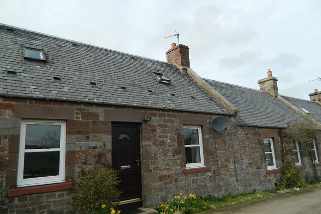 Thumbnail Cottage to rent in Carfrae Cottages, Garvald, East Lothian