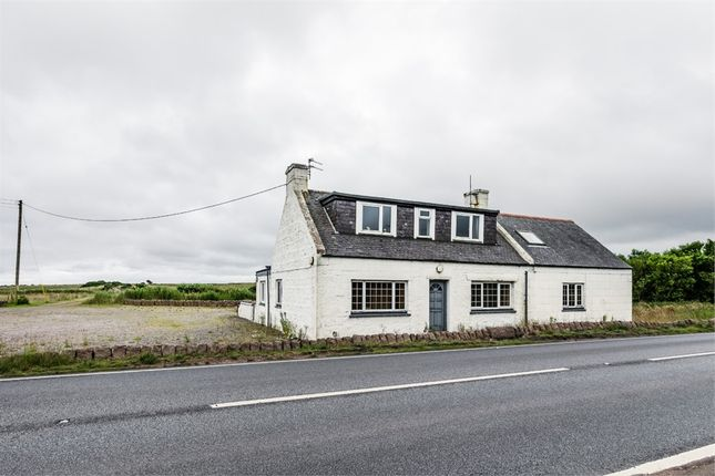 Thumbnail Detached house for sale in Longhaven, Peterhead, Aberdeenshire