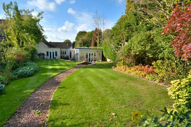Thumbnail Detached bungalow for sale in Common Hill, West Chiltington, Pulborough