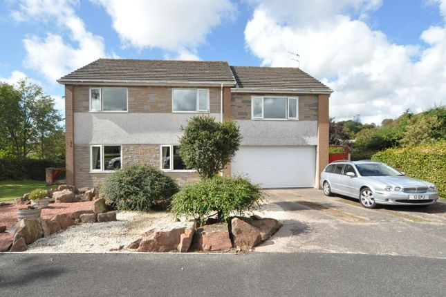 Thumbnail Detached house for sale in Meadowfield, Seascale, Cumbria