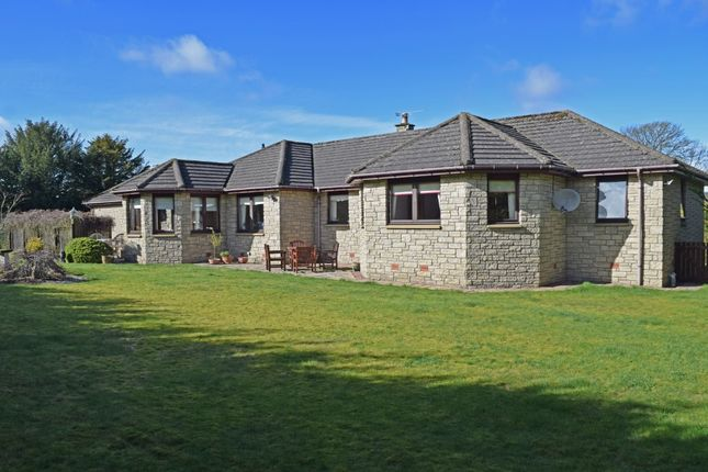 Thumbnail Detached bungalow for sale in Hollybank, Castleton Road, Auchterarder, Perthshire