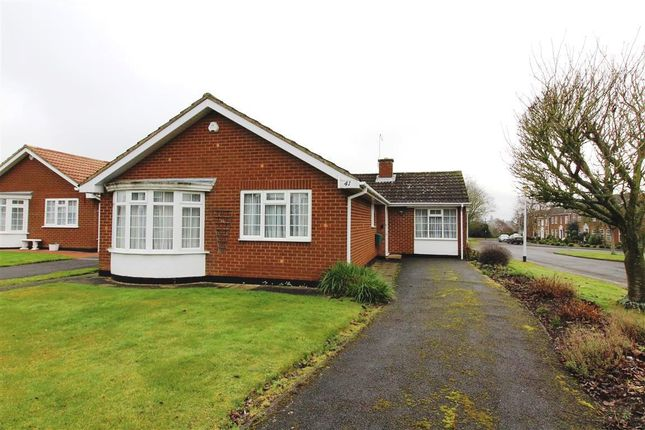 Thumbnail Bungalow to rent in Cranbrook Drive, Maidenhead