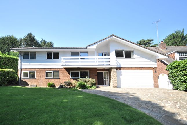 Thumbnail Detached house for sale in Sundridge Avenue, Bromley