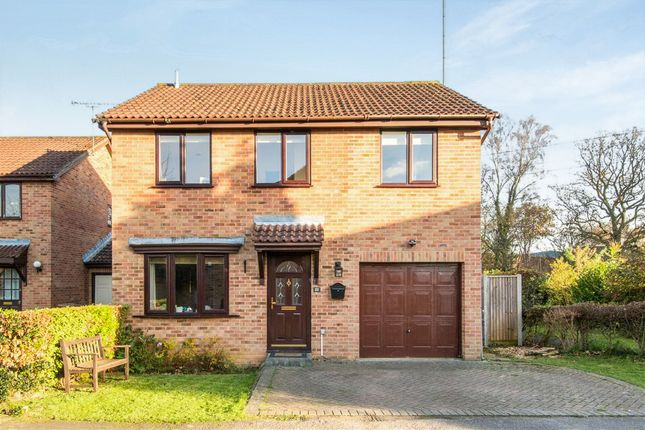 Thumbnail Detached house for sale in Teviot Road, Chandlers Ford, Eastleigh