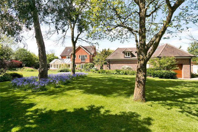 Thumbnail Detached house for sale in Winkfield Lane, Winkfield, Windsor, Berkshire