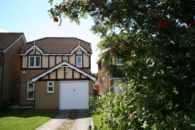 Thumbnail Semi-detached house to rent in Gardner Park, North Shields