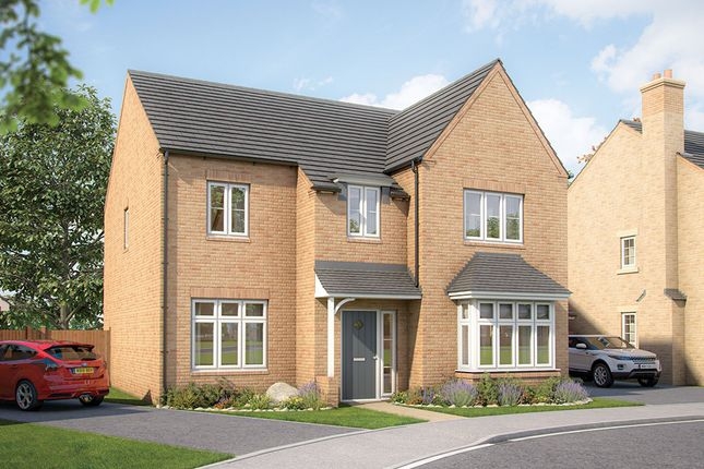 """Thumbnail Detached house for sale in """"The Birch"""" at Wenrisc Drive, Minster Lovell, Witney"""