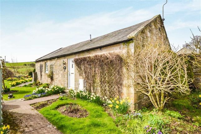 Thumbnail Barn conversion for sale in Netherton, Morpeth, Northumberland