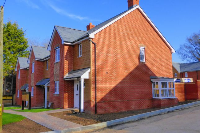 Thumbnail Detached house for sale in Telegraph Road, West End, Southampton