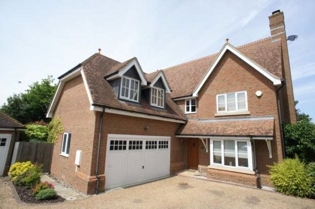 Thumbnail Detached house to rent in Pucknells Close, Swanley, Kent