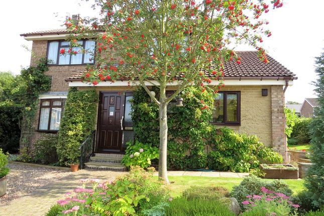 Thumbnail Detached house for sale in Foxwood Close, Hasland, Chesterfield