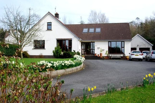 Thumbnail Detached house for sale in Mountain Road, Newtownards