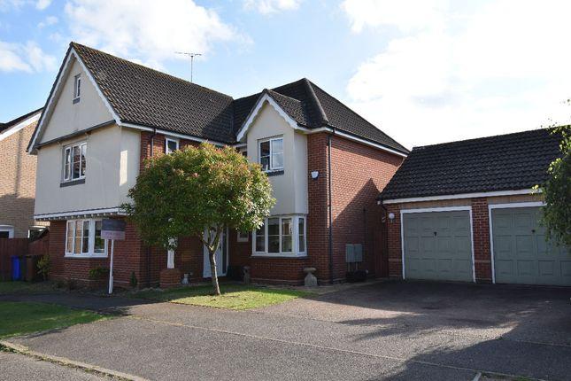 Thumbnail Detached house for sale in Risbridge Drive, Kedington, Haverhill