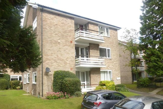 Thumbnail Flat to rent in Avenue Road, St.Albans