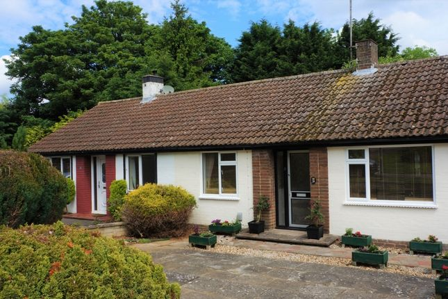 Thumbnail Bungalow for sale in Lime Grove, Linslade