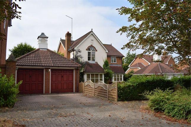 Thumbnail Detached house to rent in Rhoscolyn Drive, Tattenhoe, Milton Keynes, Buckinghamshire