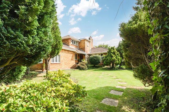 Thumbnail Detached house for sale in Outlands Lane, Curdridge, Southampton