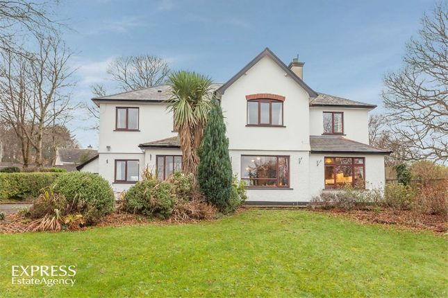 Thumbnail Detached house for sale in Drumavoley Park, Ballycastle, County Antrim