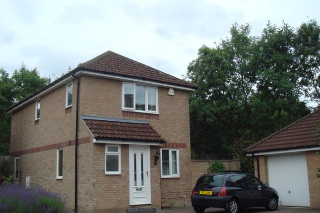 Thumbnail Detached house to rent in Tinsley Close, Crawley
