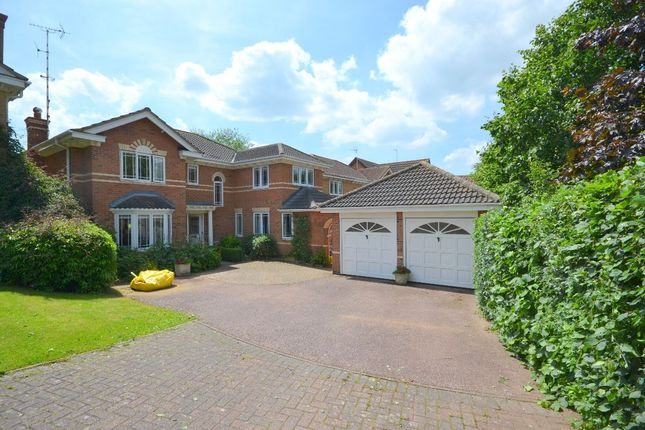 Thumbnail Detached house for sale in Belle Baulk, Towcester