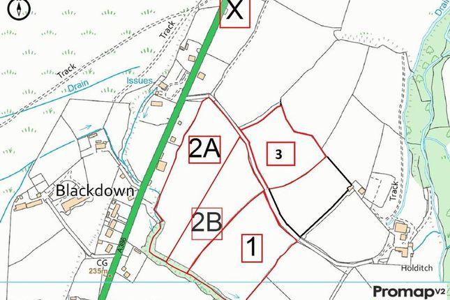Land Plan of Mary Tavy, Tavistock PL19