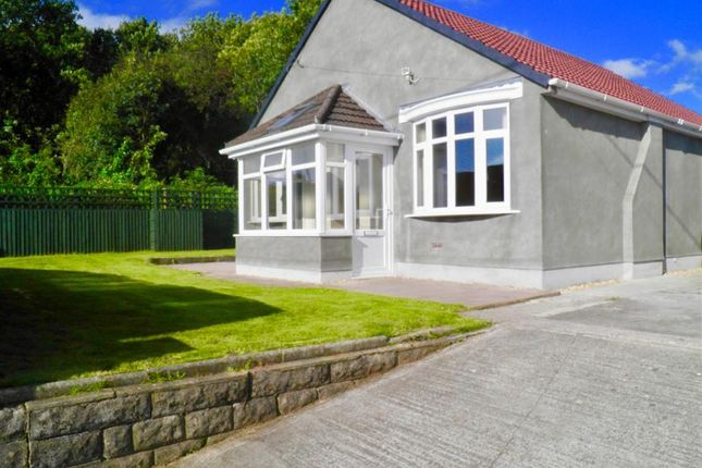 Thumbnail Bungalow to rent in Tyla Coch, Llanharry, Pontyclun