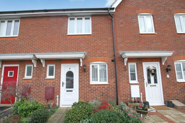 Thumbnail Terraced house to rent in Puffin Road, Herne Bay