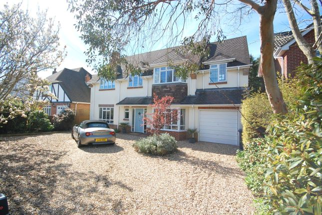 Thumbnail Detached house to rent in Huntly Road, Bournemouth