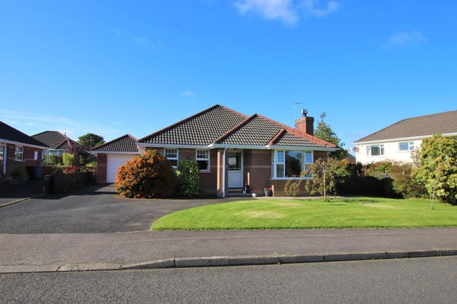 Thumbnail Detached bungalow for sale in 5 Riverview, Ballykelly