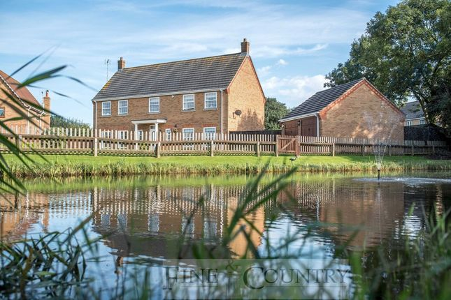 Thumbnail Detached house for sale in Willows Close, Tydd St. Mary, Wisbech
