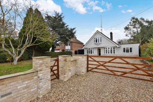 Thumbnail Bungalow for sale in Gosfield Road, Braintree
